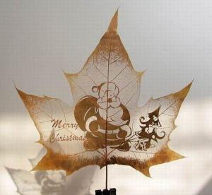 dessins-feuilles-morte-automne-10