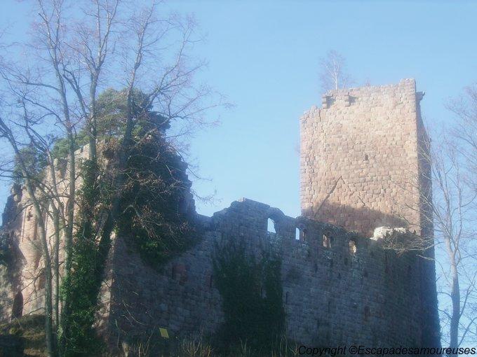 château du Kagenfels03