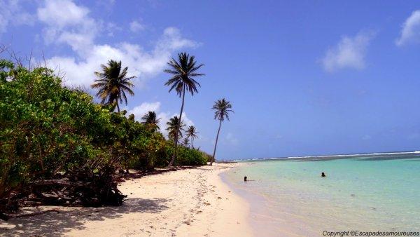Guadeloupe plage Bois jolan