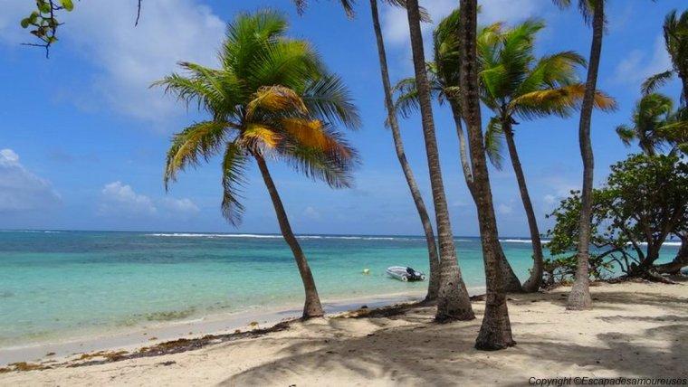 Guadeloupe plage de la caravelle