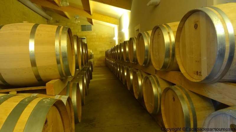 saintemilion15