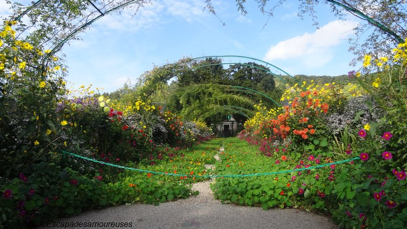 Jardin claude monet Giverny